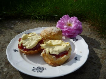 Scones as they should be, with a proper abundance of jam and clotted cream
