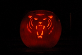 Tiger pumpkin! Yes, it was a little fiddly. But worth it.